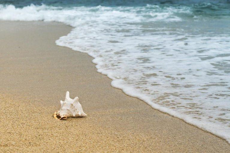 Stylowe torby plażowe, które uzupełniają twój strój